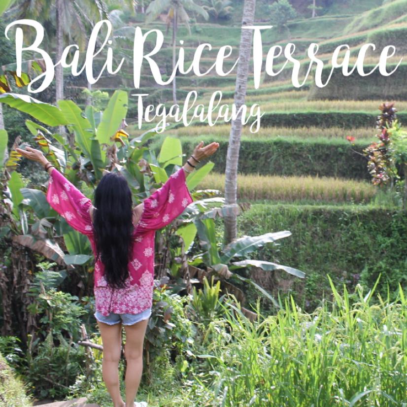 Tegalalang Rice Field Bali